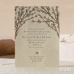 elum-weddings-3