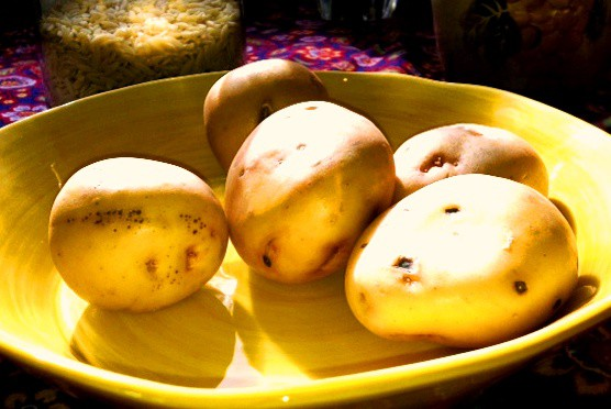 yellow_potatoes