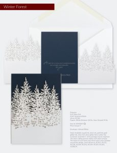Business Holiday Collection | Winter Forest