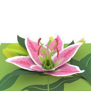 Lovepop Lily Bloom 3D Pop Up Card