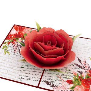 Lovepop Love Rose Bloom 3D Pop Up Card