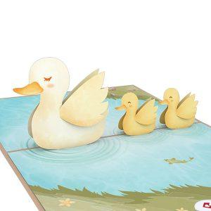 Hyegraph Invitations Lovepop Ducklings 3D Pop Up Card